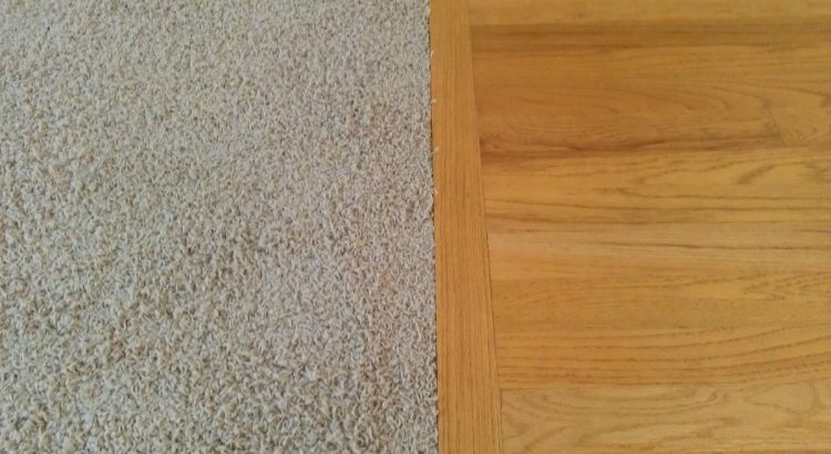 carpet vs hardflooring