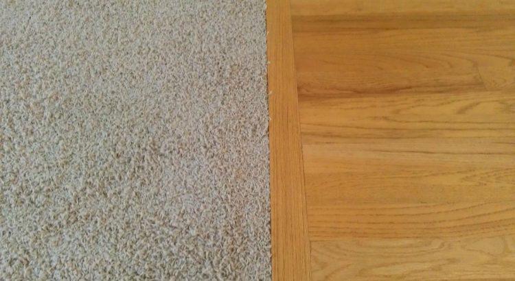 carpet vs hardflooring