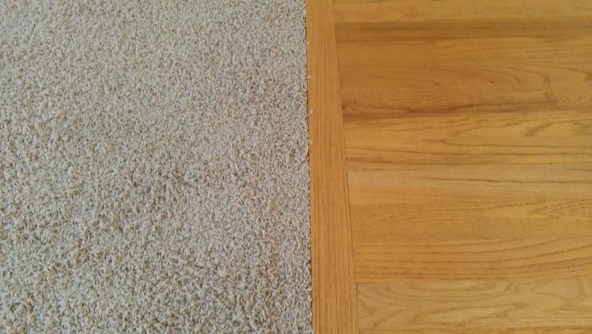 Carpet vs hard floors which is easier to maintain all for Hard laminate flooring